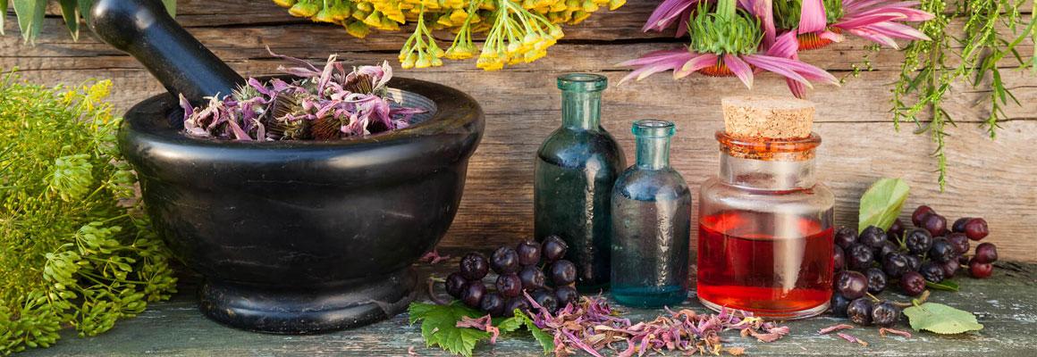 Produse-din-plante-medicinale