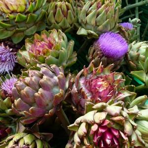 anghinare - planta medicinala diuretica