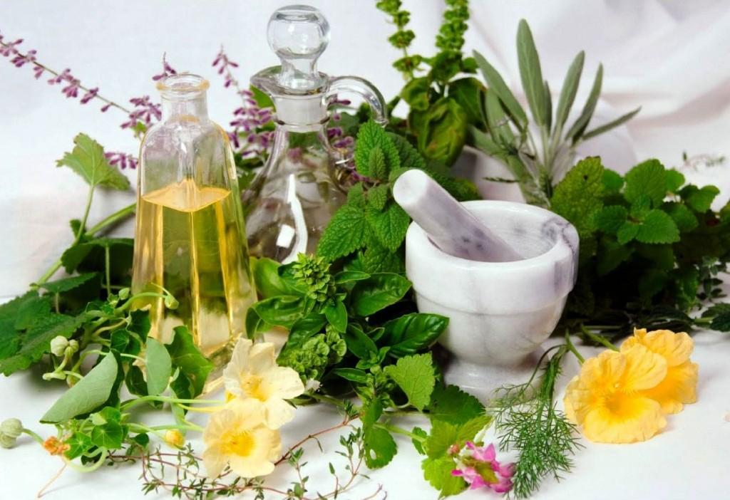 plante medicinale pentru slabit
